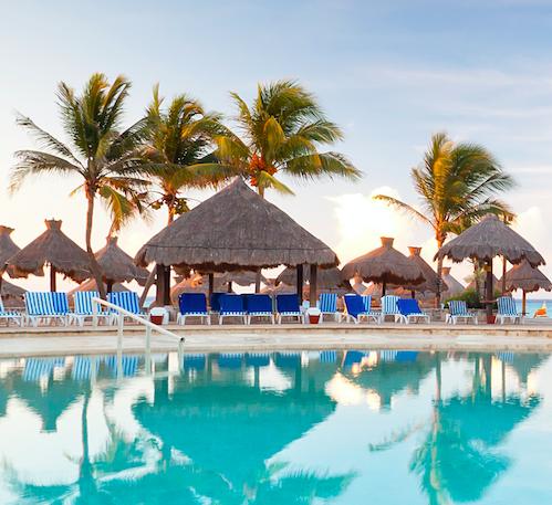 moje wakacje aplikacja tlo palmy basen