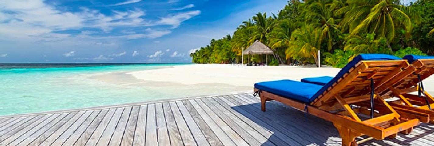moje wakacje aplikacja tło morze palmy taras