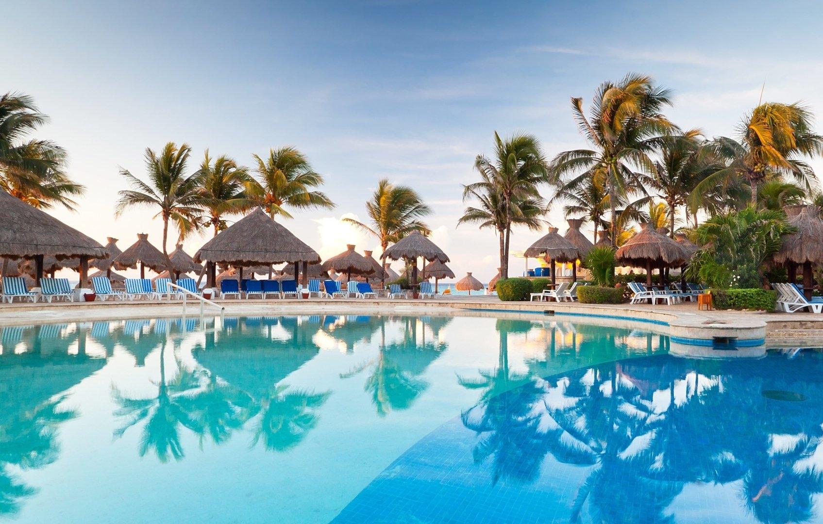 moje wakacje aplikacja tło palmy basen
